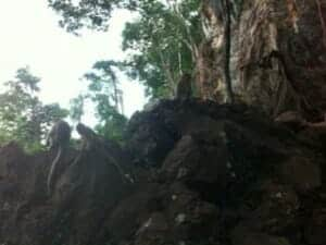 Angel-phuket-tours-memorable-trip-5