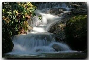 Private-guided-tours-phuket-phang-nga-3